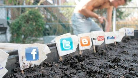 How Valuable is a Social Media Audience, Really? | Online Marketing with Tech | Scoop.it