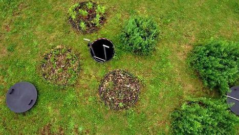 ARTE+7 | Sols contaminés : des plantes à la rescousse | Agriculture urbaine, architecture et urbanisme durable | Scoop.it