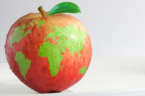 Web marketing internazionale: come impostare la giusta strategia | Comunicare | Scoop.it