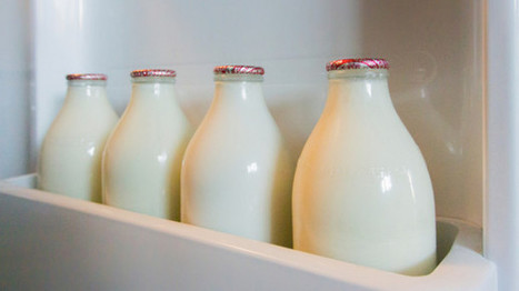 More than 50 Campylobacter cases linked to raw milk | Media Cultures: Microbiology in the news | Scoop.it