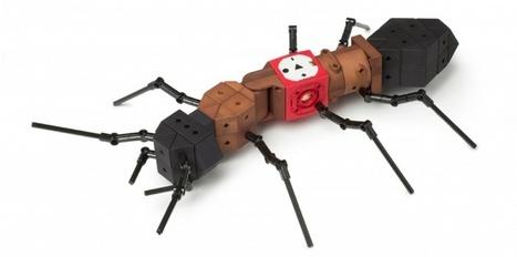 Un kit pour apprendre la robotique aux enfants - Syrobo | Quantum Quantique | Scoop.it