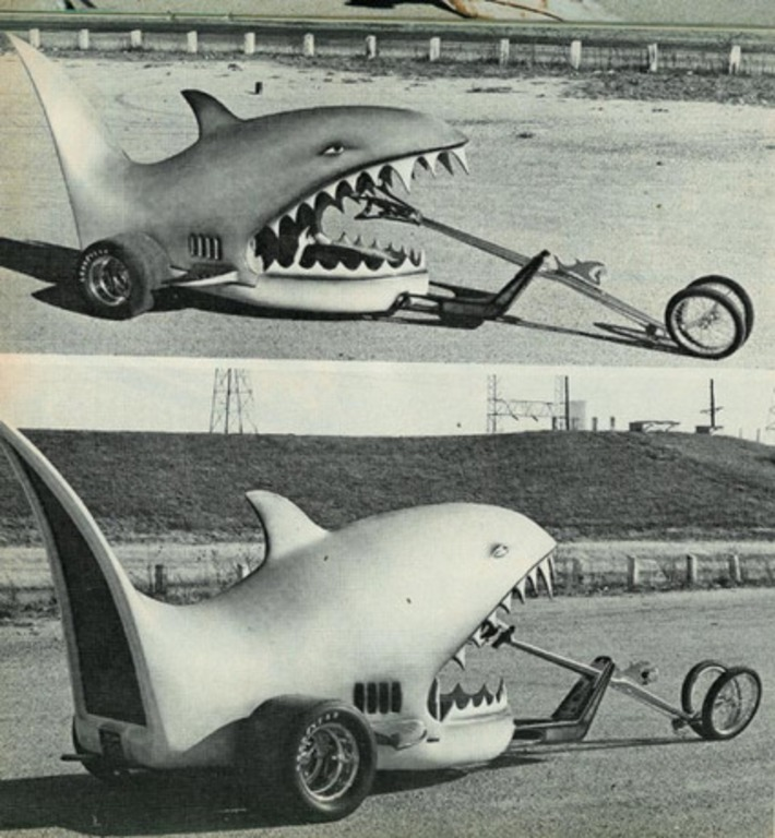 Land Shark | Kitsch | Scoop.it