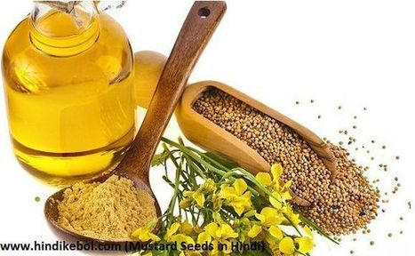 Hindi meaning of Mustard and mustard seed benefits' in