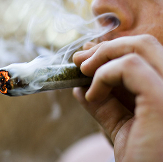 This is How Much Marijuana Prohibition Costs You, the Taxpayer   Crap You Should Read   Scoop.it