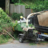 Save tree removal from Beaver`s Tree Service in Dayton OH.