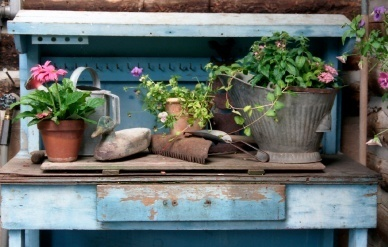 Container Gardening in Shade | Gardening is more than Digging the Dirt | Scoop.it