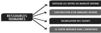 Les réseaux sociaux d'entreprise | Travail collaboratif et réseau social d'entreprise | Scoop.it