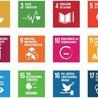 Elearning en la Cooperación Universitaria al Desarrollo