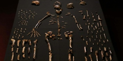 Scientists Have Discovered a New Human-Like Species in South Africa | News we like | Scoop.it