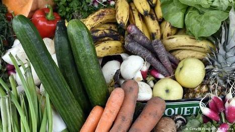 "Denmark leads Europe in tackling food waste | Environment (""measure the problem before managing it"") 