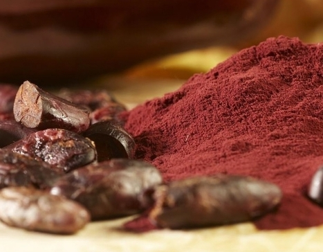 DÉCLIN COGNITIF: Des flavanols du cacao pourraient l'enrayer | Neuro-Immune Regulatory Pathways | Scoop.it