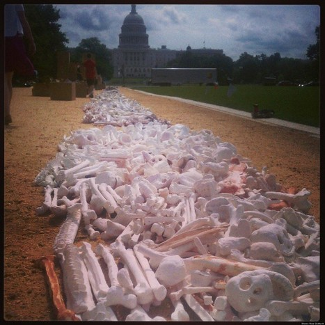 'One Million Bones' Exhibit On National Mall Raises Awareness For Genocide ... - Huffington Post   Museums and exhibits   Scoop.it