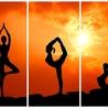Yoga Teacher Training Certification Course