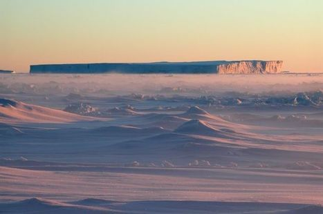 30 new Antarctic marine species found | La Trobe University | All about water, the oceans, environmental issues | Scoop.it