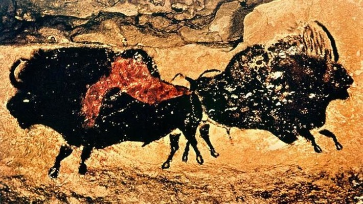 La découverte d'une nouvelle espèce de bison confirmée par des peintures rupestres | Le Figaro | Kiosque du monde : A la une | Scoop.it