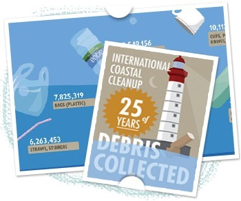 Keep the Coast Clear: How to visualize ocean trash | green infographics | Scoop.it