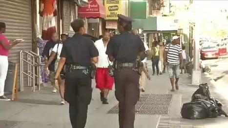 Court-Appointed Monitor Overseeing NYPD's Stop-and-Frisk Reforms Submits Two ... - NY1 | Police Problems and Policy | Scoop.it