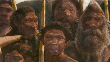 At 400,000 Years, Oldest Human DNA Yet Found Raises New Mysteries | History | Scoop.it