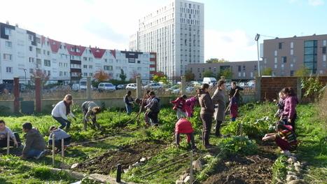 Etudiants paysagistes et gamins des cités embellissent ensemble un quartier populaire de Seine-Saint-Denis   Sustainable imagination   Scoop.it