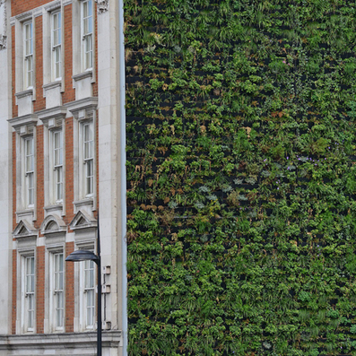 "London's largest Living Wall will ""combat flooding"" 