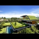 8 Homes With Living Roofs - Forbes | Arrival Cities | Scoop.it