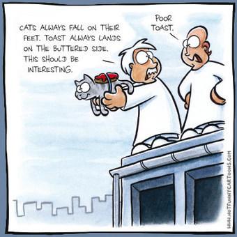 NOTFUNNY Cartoons | CRASH 6 | Scoop.it