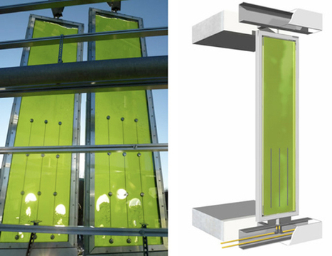 Algae-powered building to open in Germany | German Information for German1 and 2 | Scoop.it