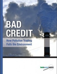 Bad Credit: How Pollution Trading Fails the Environment | Food & Water Watch | Nature + Economics | Scoop.it