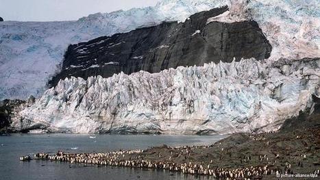Malvinas: en marzo habrá referendo | América Latina | DW.DE | 19.01.2013 | Acorazado Topemkin | Scoop.it