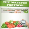 The Diabetes Protocol    Lean to Cure Diabetes Today