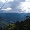 Ecosistemas Frágiles: Realidad Colombiana