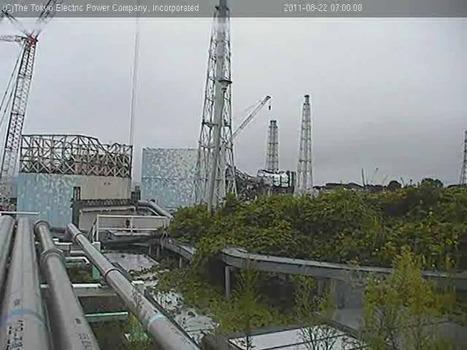 [Live Fukushima] Post du 22 Août ouvert aux commentaires | 2 webcams | Japon : séisme, tsunami & conséquences | Scoop.it