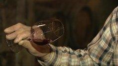 Bourgogne : le millésime 2013 a donné -20% de rendements, un vin blanc au parfum d'agrumes et un vin rouge fruité - France 3 Bourgogne   Le vin quotidien   Scoop.it