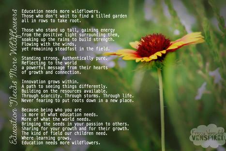 Education Needs More Wildflowers | education k-12 | Scoop.it