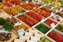 GM crops: Forget the money, follow the science | EurActiv | Food issues | Scoop.it