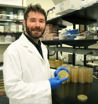 Research offers promising way to fight infection using silver | UToday | University of Calgary | shubush design & wellbeing | Scoop.it