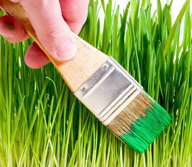 Greenwashing: una pratica davvero poco verde | Offset your carbon footprint | Scoop.it