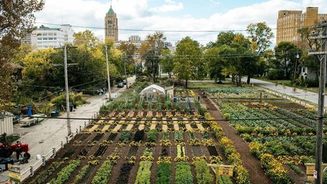 America's first sustainable urban agrihood is growing in Detroit | The Blog's Revue by OlivierSC | Scoop.it