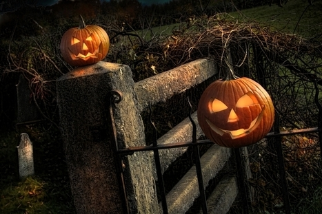 Phrasal verbs, idioms and sayings for Halloween - Online English Lessons | English language idioms | Scoop.it