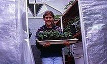 School Greenhouse Guide | School Gardening Resources | Scoop.it