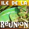 Ile de La Réunion - Reunion Island