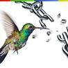 Google introduces new search formula 'Hummingbird'