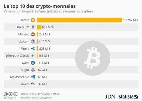 Infographie: le top 10des crypto-monnaies dans le monde | Vous avez dit Innovation ? | Scoop.it