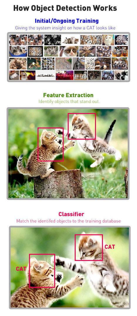 Как Google будет распознавать и ранжировать изображения в ближайшем будущем? | SEO, SMM | Scoop.it