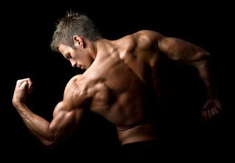 Review of Legal Steroids at GNC? (Top 10 Closes