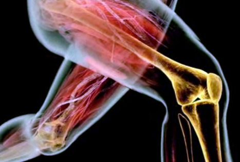 Ask Well: Squats for Aging Knees | Power :: Endurance :: Fitness | Scoop.it