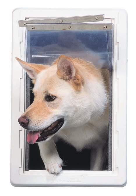 Pet Doors For Doors | Dog Doors | Cat Doors   Pet Door Store | The
