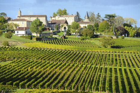 Oenotourisme dans le Bordelais : découvrir la Route des Vins | Images et infos du monde viticole | Scoop.it
