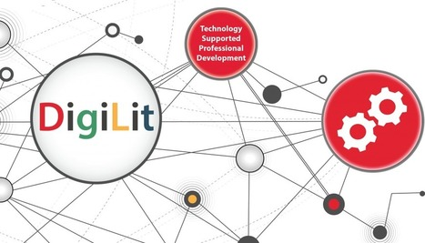 DigiLit Leicester: 2013 Survey Results | Digital Literacy in Education and Libraries | Scoop.it
