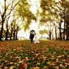 Weddingzidea | Tie The Knot